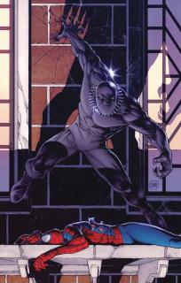 Peter Parker: The Spectacular Spider-Man #298