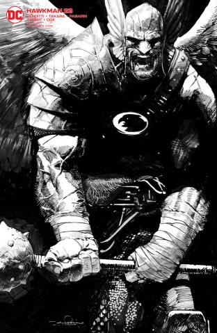 Hawkman #23 (Gerardo Zaffino Cover)