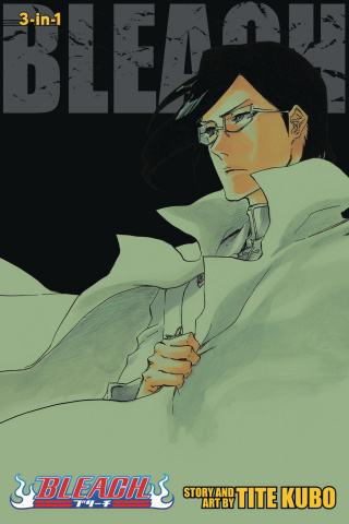 Bleach Vol. 24 (3-in-1 Edition)