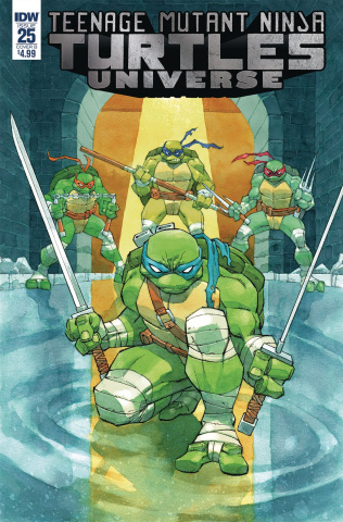 Teenage Mutant Ninja Turtles Universe #25 (Daniel Cover)