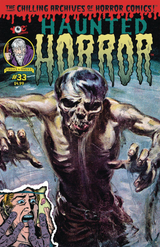 Haunted Horror #33