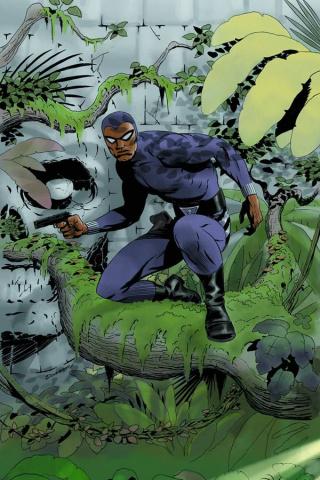 The Phantom #1 (Rare Cooke Virgin Cover)