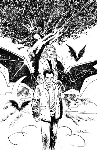 Angel & Spike #14 (Bowyer Cover)