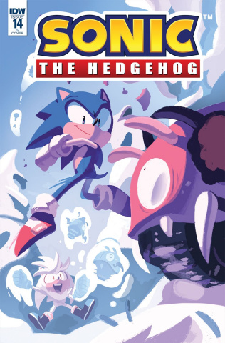 Sonic the Hedgehog #14 (10 Copy Fourdraine Cover)