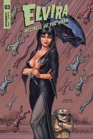 Elvira: Mistress of the Dark #3 (Linsner Cover)