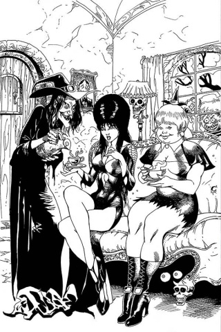 Elvira: Mistress of the Dark #10 (21 Copy Castro B&W Virgin Cover)