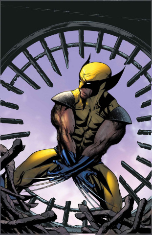 Wolverine: Infinity Watch #1 (McKone Cover)