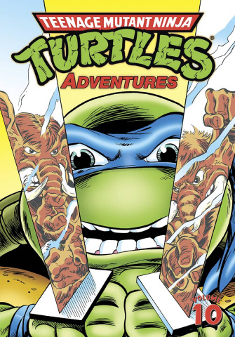 Teenage Mutant Ninja Turtles Adventures Vol. 10
