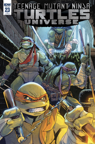 Teenage Mutant Ninja Turtles Universe #23 (10 Copy Cover)