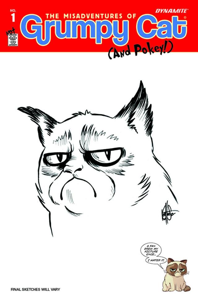 Grumpy Cat #1 (Haeser Hand Drawn Original Art Cover)